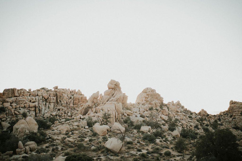 Adventurous Joshua Tree Elopement